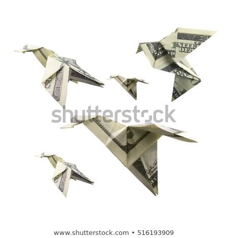 Origami vogel bankbiljetten witte geld natuur Stockfoto © butenkow