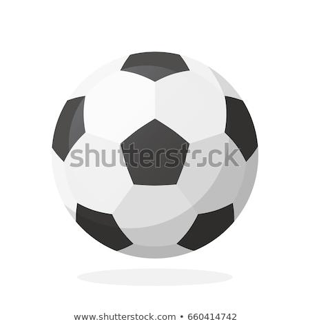 Soccer ball  icon, cartoon style Stock photo © ylivdesign