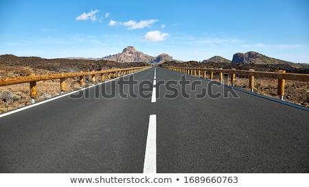 Road on Tenerife island Stock photo © Hofmeester