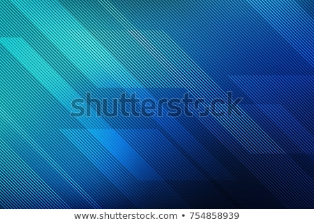 Elegáns vonal minta vektor szövet fekete Stock fotó © SArts