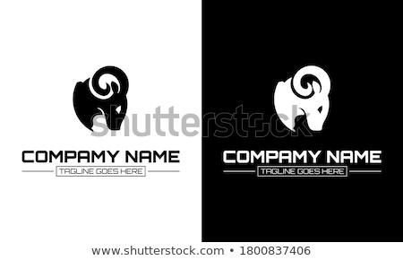 Siyah koyun mutlu yüz örnek gülümseme sanat Stok fotoğraf © bluering