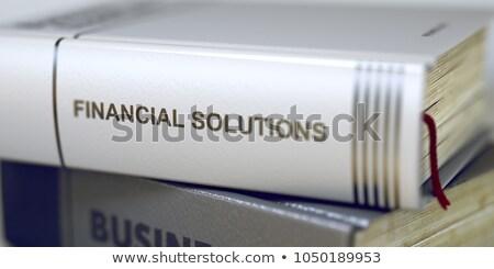 Budget business boek titel 3d illustration Stockfoto © tashatuvango