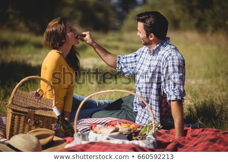 Couple with picnic basket in field Stock photo © IS2