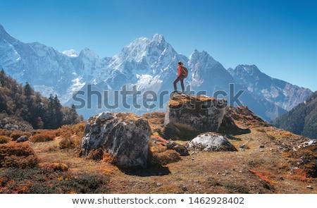 Női hátizsákos turista mászik hátizsák Himalája Nepál Stock fotó © blasbike