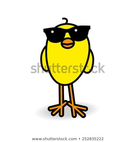 Pascua pollitos pie cuadrados grupo animales Foto stock © monkey_business