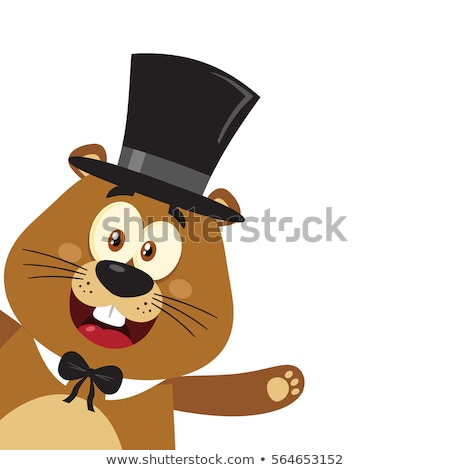 Uśmiechnięty maskotka cartoon charakter cylinder hat Zdjęcia stock © hittoon