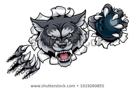 Lobo boliche mascote zangado animal esportes Foto stock © Krisdog