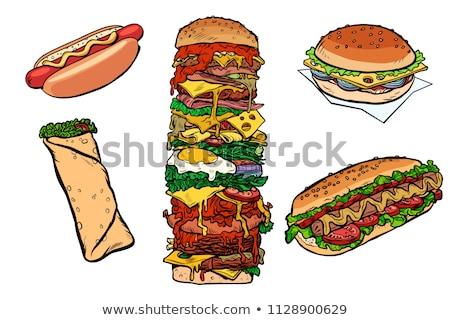 Collectie ingesteld fast food kebab hamburger hot dog Stockfoto © studiostoks
