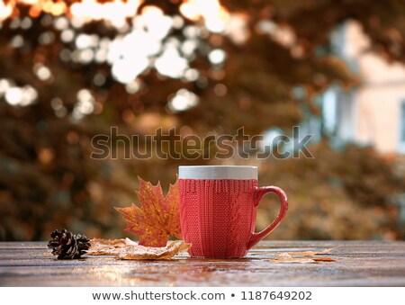 Cup of tea autumn concept Stock photo © Lana_M