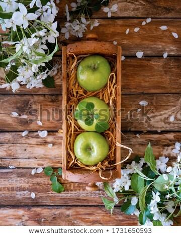 緑 · 赤いリンゴ · 孤立した · グレー · 食品 - ストックフォト © denismart