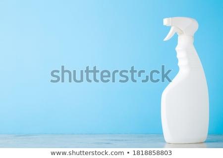 Házvezetőnő kék üres fal takarítás termék Stock fotó © ra2studio