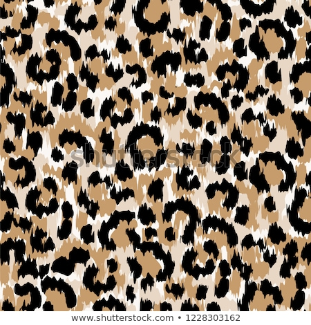 leopard cheetah spotted texture leopard seamless pattern design background stock photo © marysan