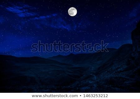 drogowego · pustyni · noc · czasu · ilustracja · słońce - zdjęcia stock © bluering