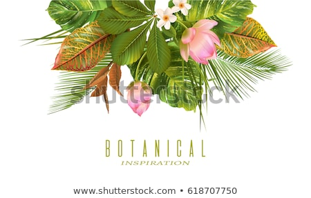 Stock photo: Summer season card of tropical plant and flower