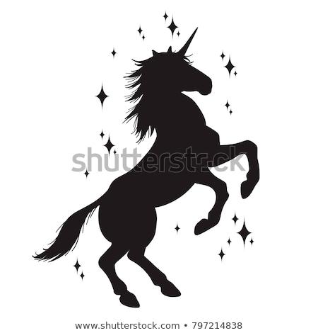 Silhueta cavalo mítico gráfico projeto animal Foto stock © Krisdog