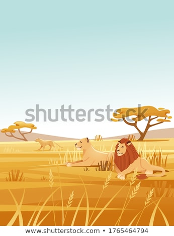 family of lions   flat design style illustration stock photo © decorwithme