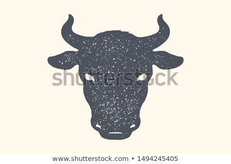 Cow, bull. Vintage retro print, poster, banner. Black and white Stock photo © FoxysGraphic