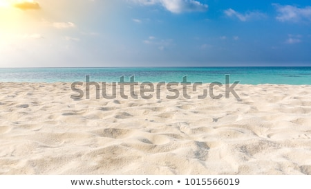 Soft beautiful Caribbean sea wave on sandy beach Stock photo © boggy