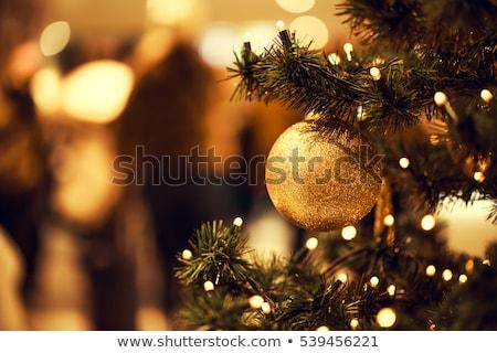 Cacko sosna piłka jodła dekoracji Zdjęcia stock © robuart
