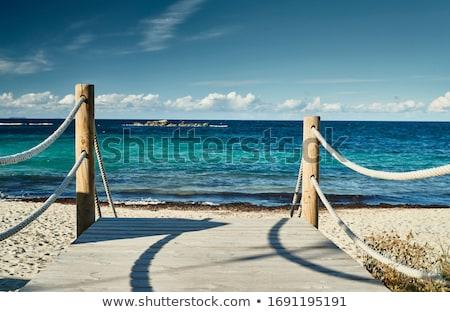 wooden walk way stock photo © suriyaphoto