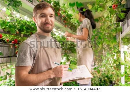 Gelukkig jonge mannelijke werkkleding permanente camera Stockfoto © pressmaster