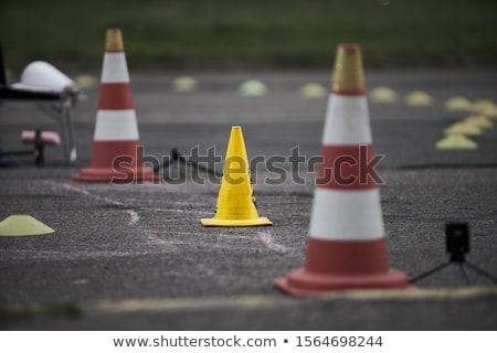 rechtdoor · asfalt · weg · leidend · hemel · bos - stockfoto © digoarpi