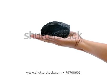 male hand holding a little lump of coal  Stock photo © antonihalim