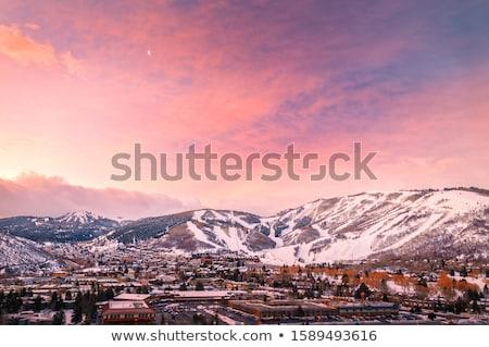 Winter snow park Stock photo © joyr