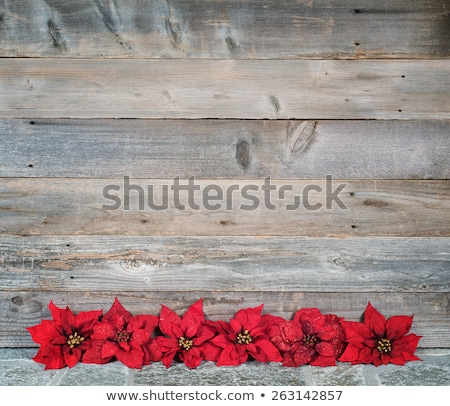 faux stone sign with copy space Stock photo © 808isgreat
