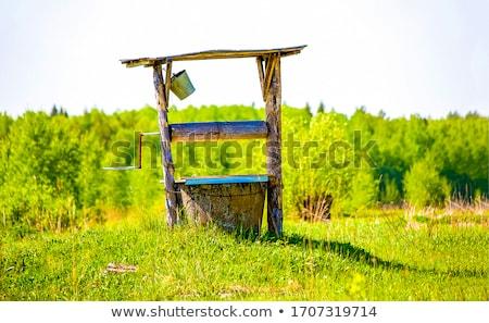 Rural well Stock photo © blanaru