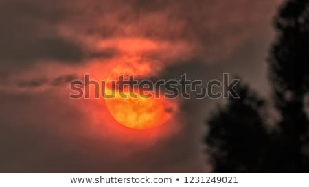 sky and the sun obsured by wildfire smoke Stock photo © PixelsAway