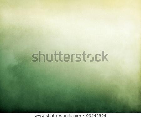 грубый зеленый фон Сток-фото © zkruger