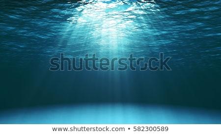 subaquático · luz · água · sol · natureza · verão - foto stock © Sniperz