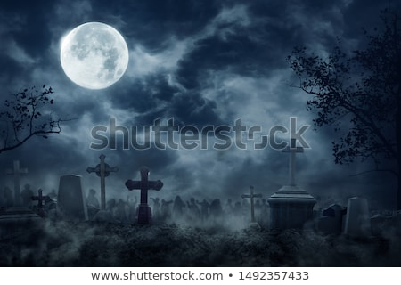 Halloween night in graveyard Stock photo © vectomart