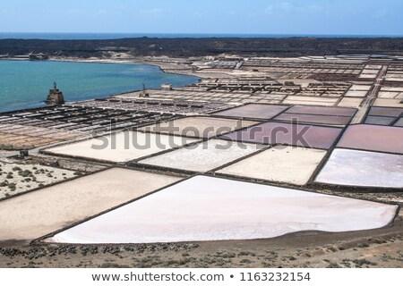 Salinas de Janubio, Lanzarote Stock photo © macsim