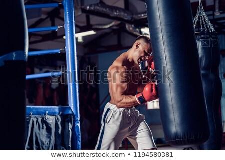 Fiatal boxeralsó képzés fehér nők sportok Stock fotó © get4net