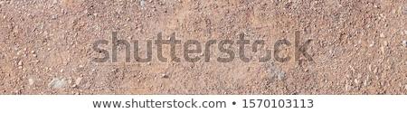 текстуры красный земле дюна песок работу Сток-фото © xedos45