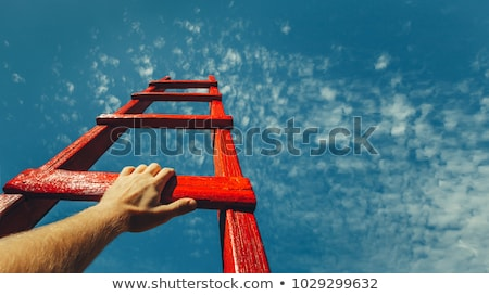 bouwvakker · dak · klimmen · omhoog · ladder · gebouw - stockfoto © arenacreative