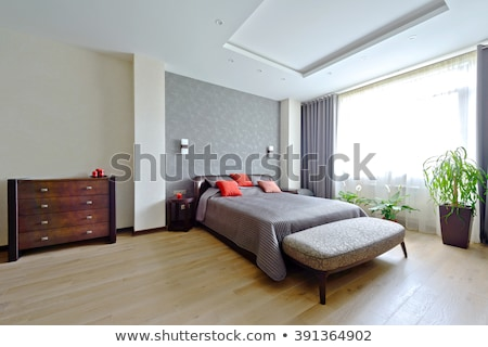 現代 ダブル ベッド 木製 完成した 家 ストックフォト © get4net