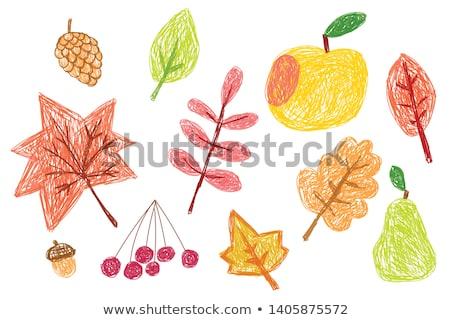 Arancione pastello pastello vettore autunno foglia d'acero Foto d'archivio © gladiolus