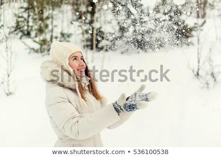 画像 · かなり · クリスマス · 少女 · 赤いドレス · サンタクロース - ストックフォト © nobilior