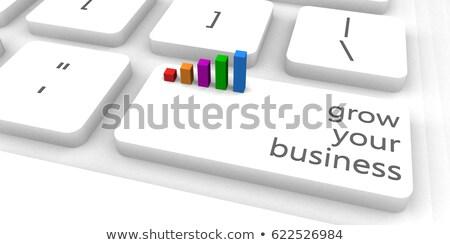 Grow Your Business Key Foto stock © kentoh