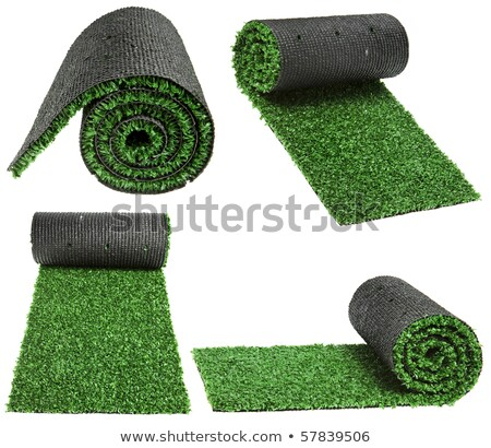 Rolar grama verde isolado branco textura esportes Foto stock © shutswis