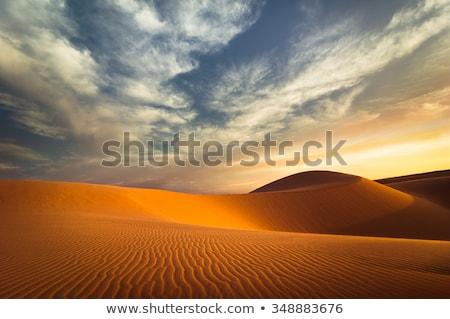 Stock fotó: Global Warming Concept Lonely Sand Dunes At Sunset Desert