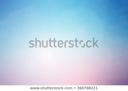 mauve · Blauw · mooie · roemeense · brunette · bikini - stockfoto © disorderly