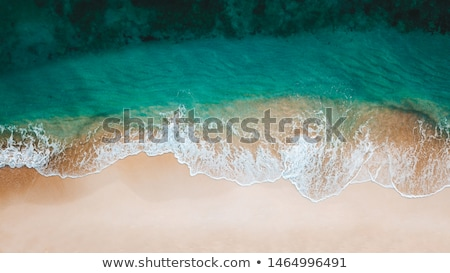 view on caribbean bay stock photo © hofmeester