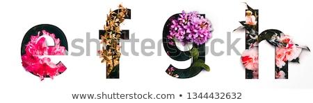 many words for alphabet g stock photo © bluering