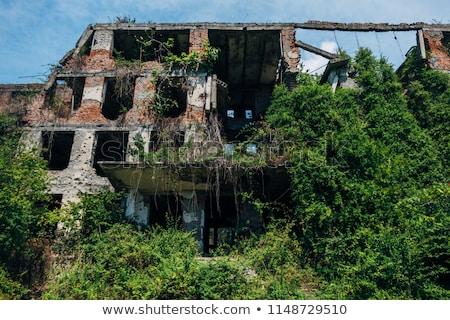 Overgrown abandoned structure. Stock photo © iofoto