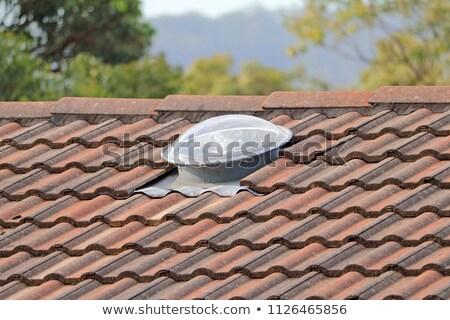 Stockfoto: Skylight Dome