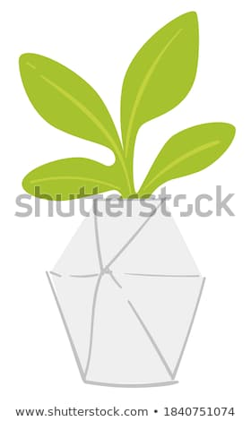 Leafy plants Stock photo © bluering